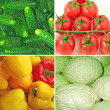 Vegetable collage — Stock Photo #3111211