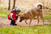 Little boy playing with his dog — Stock Photo