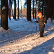 Stock Photo: Little Boy Cross Country Skiing