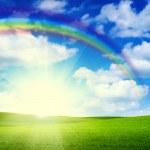 çim gökyüzü manzara — Stok fotoğraf