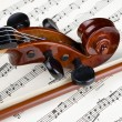Violin — Stock Photo #3909665