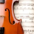Violin — Stock Photo #3909725