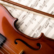 Violin — Stock Photo #3909749