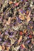 乾燥された花、果実、茶葉 — ストック写真