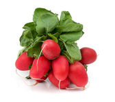 Red radish isolated on white background — Stock Photo