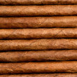 Cigars in a row close-up - Stock Photo