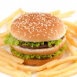 Hamburguer and fries — Stock Photo