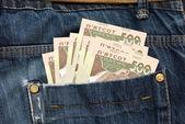 El dinero está en un bolsillo — Foto de Stock