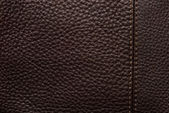 Natural qualitative brown leather — Stock Photo