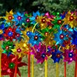 Stock Photo: Color pinwheel