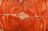 Salmon Fillets — Photo