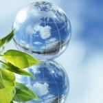 Global Ecology — Stock Photo