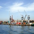 Container Harbour — Stock Photo #3184398