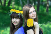 Girls And Dandelions — Stock Photo