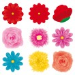 Flowers set, part 3 - Stock Vector