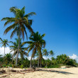 Tropical paradise idyllic beach — Stock Photo #3253077