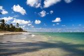 カリブ海の楽園 — ストック写真