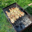 Barbecue with chicken  in metal grate - Stock Photo