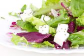 Salad with leafs and sheep cheese on plate — Stock Photo