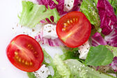 Salad with leafs,tomato and sheep cheese — Стоковое фото