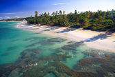 Caribbean beach from helicopter view — Stock Photo