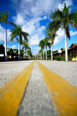 Yellow dividing lines on road — Stock Photo