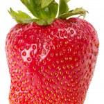 Strawberry — Stock Photo #3266593