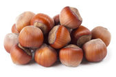 Some hazelnuts — Stock Photo