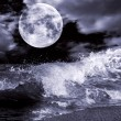 Full moon — Stock Photo #3619043