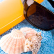 Towel, shells, sunglasses and lotion - Stock Photo