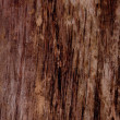 Wood grungy background — Stock Photo #3152464