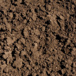 Stock Photo: Soil