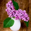 Lilac blooms — Stock Photo #3235875