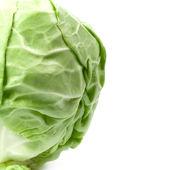 Zielona kapusta — Zdjęcie stockowe