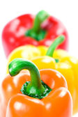 Three bell peppers — Stock Photo