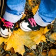 Hiking shoes over yellow leaves — Stock Photo
