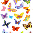 Set of different butterflies — 图库矢量图片