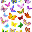 Stock Vector: Set of different butterflies
