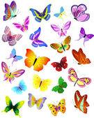 Set of different butterflies — Stock Vector