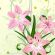Stock Vector: Lily flowers
