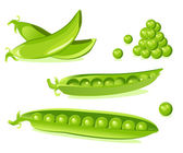 Pea pod — Stock Vector