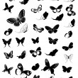 Set of butterflies - Vettoriali Stock