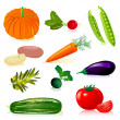 Set vegetables — Stock Vector