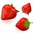Strawberry — Vector de stock #2983702
