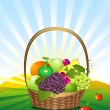 Stock Vector: Fruit basket in meadow