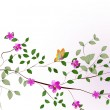 Branch of a tree with flowers — Stock Vector