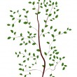 Sapling - Stock Vector