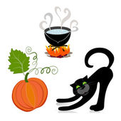 Pumpkin cat cauldron — Stock Vector