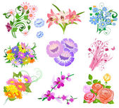 Set a bouquet of flowers — Stock Vector