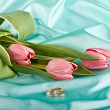 Two rings and tulips — Stock Photo